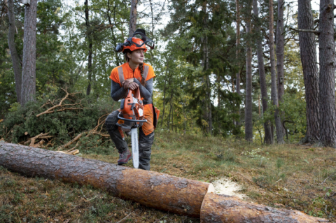 Petrol Vs Battery Chainsaws - The Best Chainsaw For Every Job